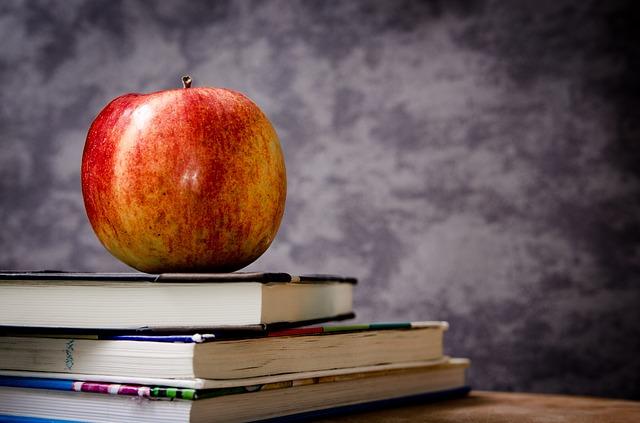 Fortbildungskosten + Ausbildungskosten im Steuerrecht